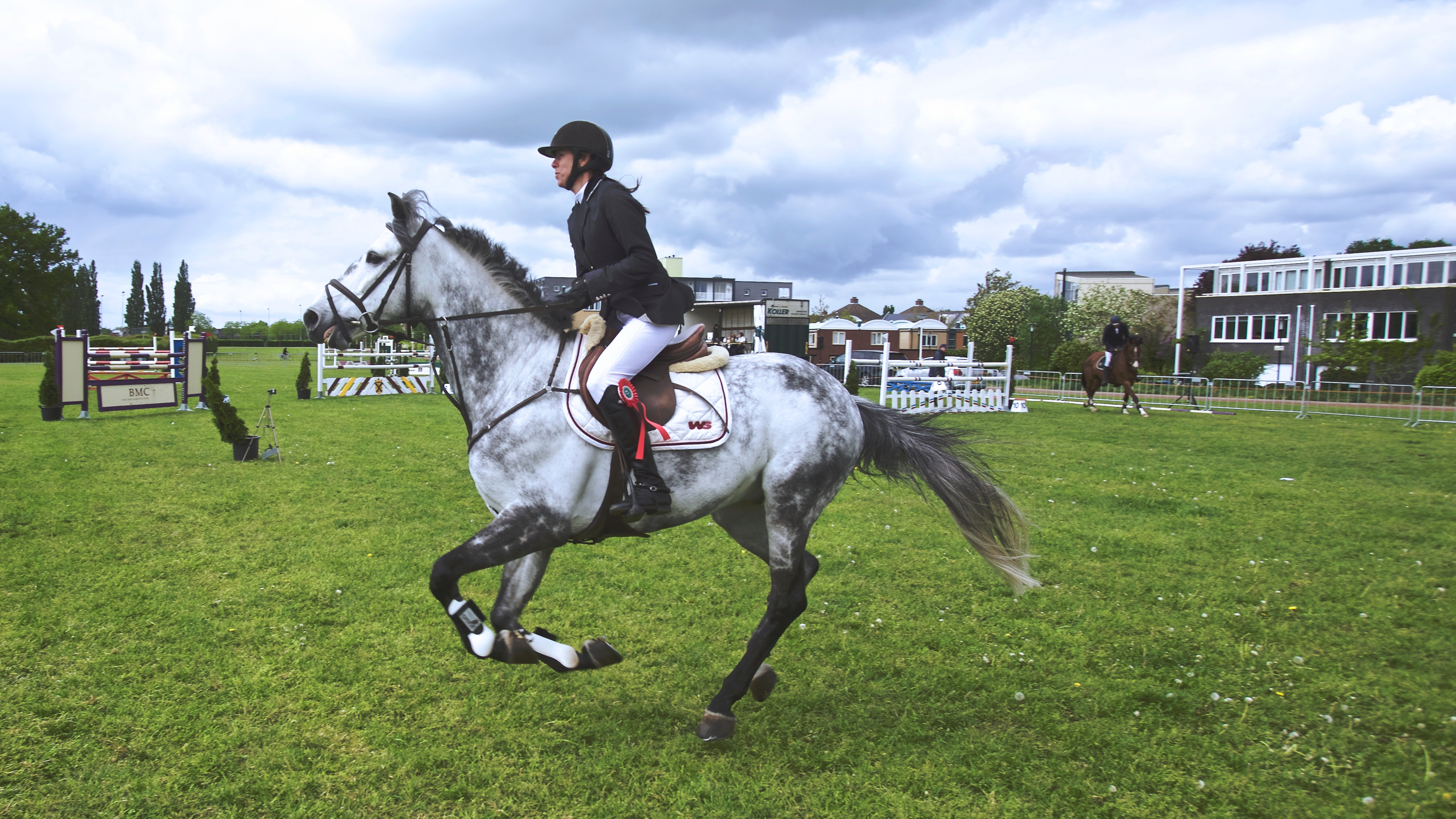 horse-action-dutch-sports-103543